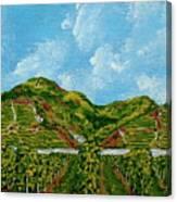 Vineyards Of The Wachau Valley Canvas Print