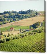 Vineyards With Stone House, Tuscany, Italy Canvas Print