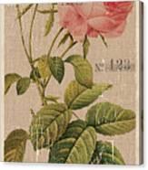 Vintage Burlap Floral 2 Canvas Print