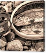 Vintage Concept Of Fly Reel And Pole With Trout In Net  Canvas Print