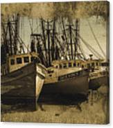 Vintage Darien Shrimpers Canvas Print