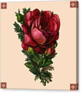 Vintage Red Rose Botanical Canvas Print