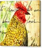 Vintage Rooster Portrait    Canvas Print