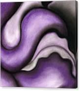 Violet 1 Canvas Print