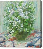 Violet Orychophragmus Canvas Print