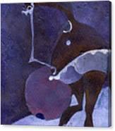 Violet Snawball Canvas Print