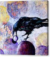 Violet-velvet Lining Canvas Print
