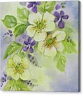 Violets And Wild Roses Canvas Print