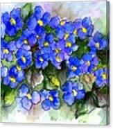 Violets Of Blue Canvas Print