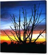 Virden Road Sunset Canvas Print