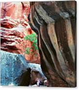 Virgin River Narrows Canvas Print