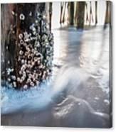 Virginia Beach Pier Canvas Print