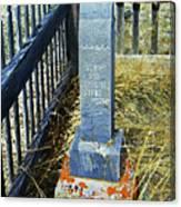 Virginia Dale - Alex Canvas Print