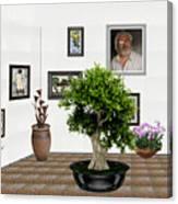 Virtual Exhibition -  Bonsai 13 Canvas Print