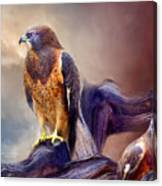 Vision Of The Hawk 2 Canvas Print