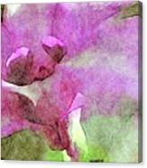 Visions of Violet Canvas Print