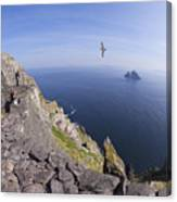 Visitors Admire Celtic Monastery, Skellig Michael, Looking To Little Skellig, County Kerry, Ireland  Canvas Print