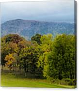 Vista Links Canvas Print