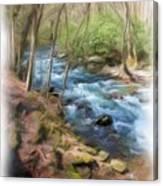 Vista Series 1244 Canvas Print