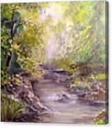 Vitsa River Canvas Print