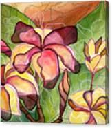 Vivian's Plumeria Canvas Print