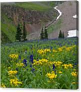 Vivid Colors Of The Colorado Alpine Canvas Print