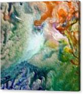 W 023 Canvas Print