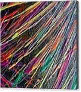 W 035 Canvas Print