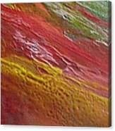 W 036 Canvas Print