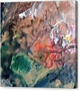 W 042 Canvas Print