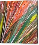 W 043 Canvas Print