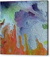 W 049 Canvas Print