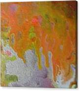 W 050 Canvas Print