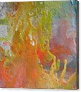 W 052 Canvas Print