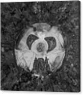 Wabi-sabi Nutz Monochrome Canvas Print