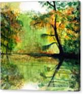 Waccamaw River Sc Canvas Print