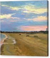 Wades Beach Sundown Study II Canvas Print