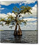 Wading Across The Lake Canvas Print