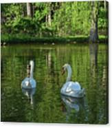 Wagner Vinyard Estate Swans Finger Lakes Lodi Ny Canvas Print