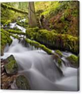 Wahkeena Creek In Green Canvas Print