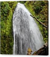 Wahkeena Falls At Footbridge, Oregon Canvas Print