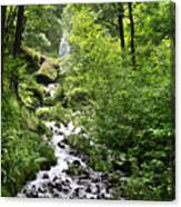 Wahkeena Falls  In   Oregon Canvas Print