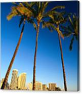 Waikiki Skyline Canvas Print