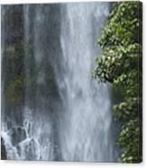 Wailua Falls Canvas Print