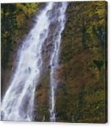 Waimoku Falls Canvas Print