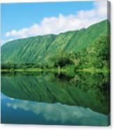 Waipio Valley Stream Canvas Print