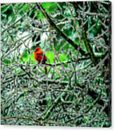 Waiting For The Thaw Canvas Print