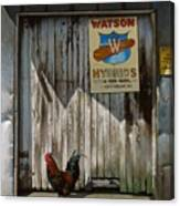Waiting For Watson Canvas Print