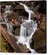 Walden Creek Cascade Canvas Print