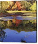 Walden Pond II Canvas Print